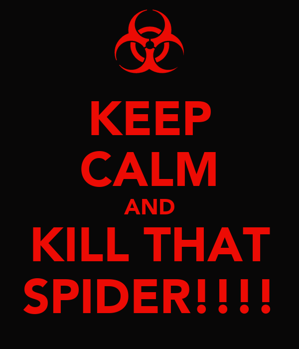 KEEP CALM AND KILL THAT SPIDER!!!!