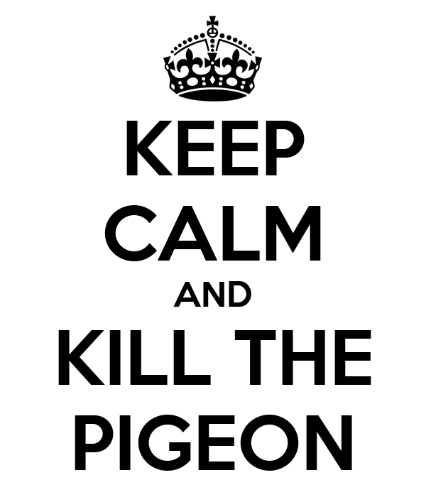 KEEP CALM AND KILL THE PIGEON