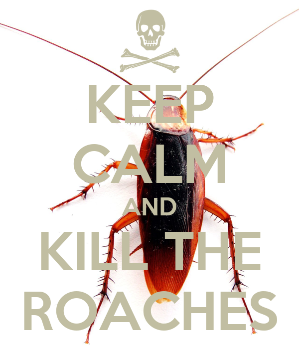 KEEP CALM AND KILL THE ROACHES