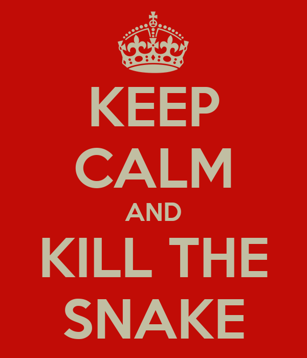 KEEP CALM AND KILL THE SNAKE
