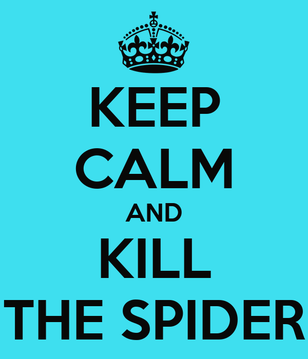 KEEP CALM AND KILL THE SPIDER