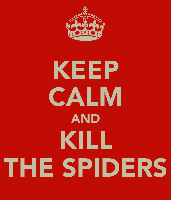 KEEP CALM AND KILL THE SPIDERS