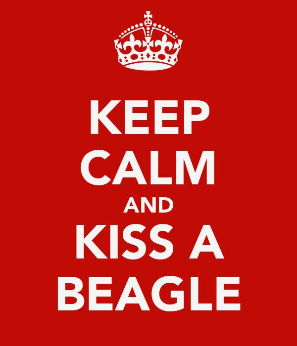 KEEP CALM AND KISS A BEAGLE