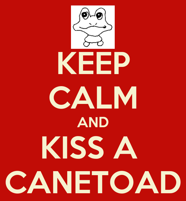 KEEP CALM AND KISS A  CANETOAD