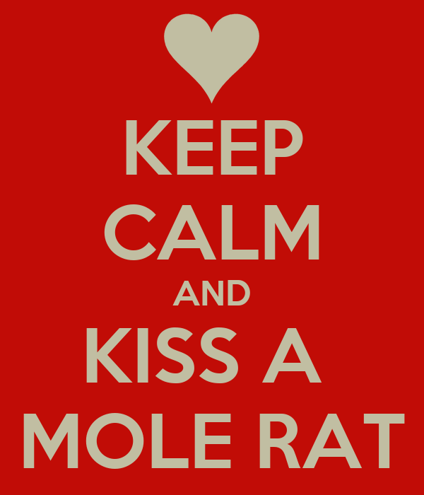 KEEP CALM AND KISS A  MOLE RAT
