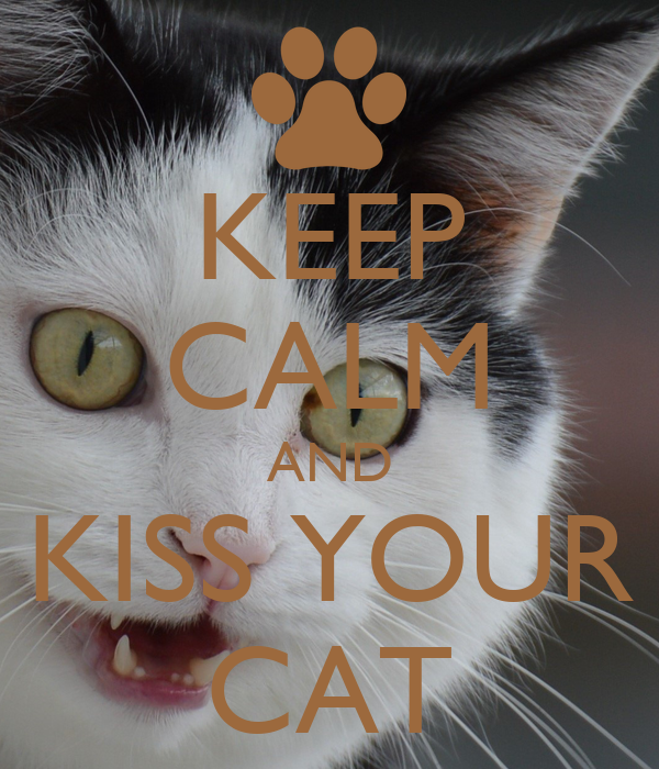KEEP CALM AND KISS YOUR CAT