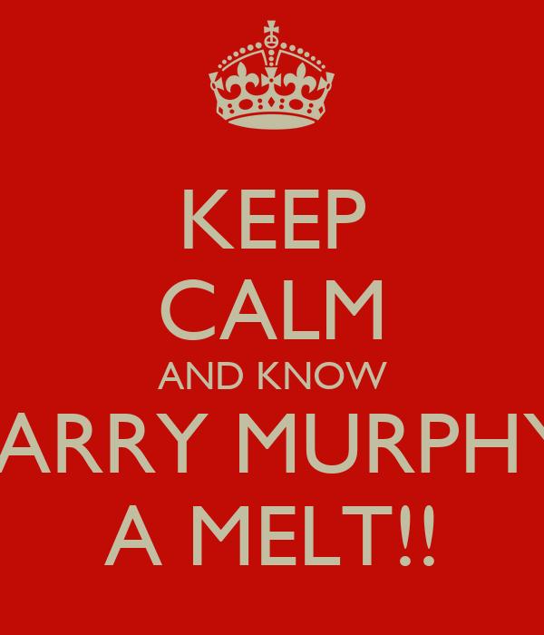 KEEP CALM AND KNOW HARRY MURPHYS A MELT!!