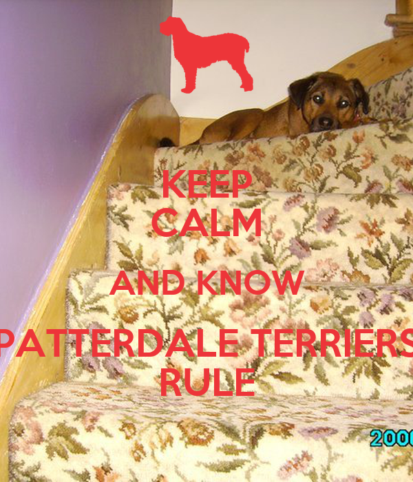 KEEP CALM AND KNOW PATTERDALE TERRIERS RULE