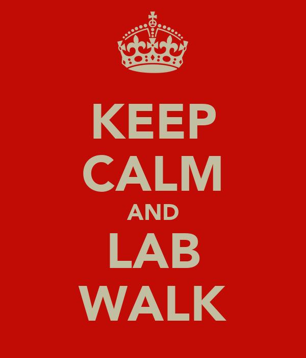 KEEP CALM AND LAB WALK