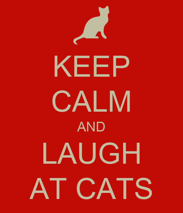 KEEP CALM AND LAUGH AT CATS
