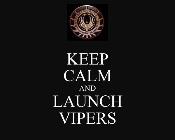 KEEP CALM AND LAUNCH VIPERS