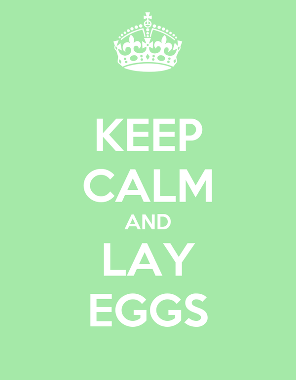 KEEP CALM AND LAY EGGS