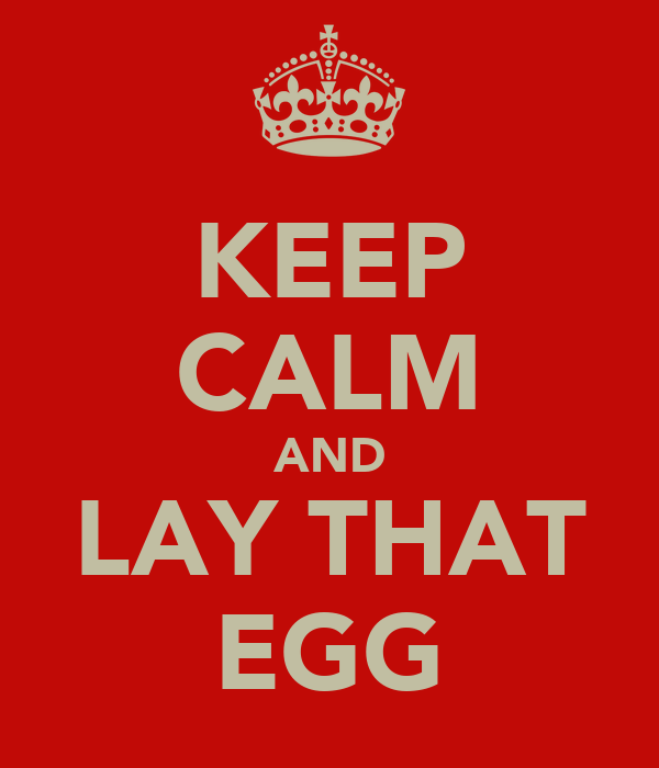 KEEP CALM AND LAY THAT EGG