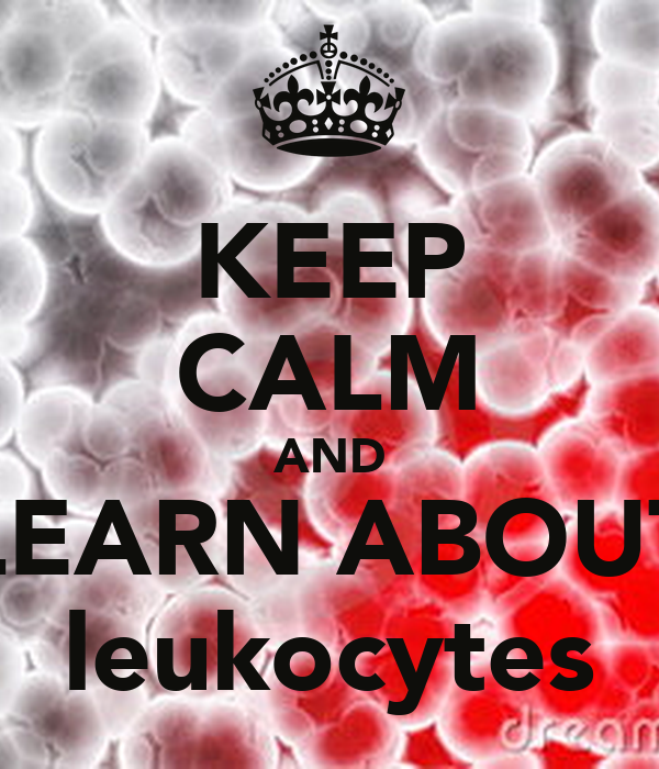 KEEP CALM AND LEARN ABOUT leukocytes