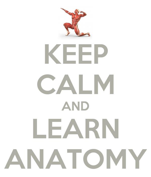 KEEP CALM AND LEARN ANATOMY