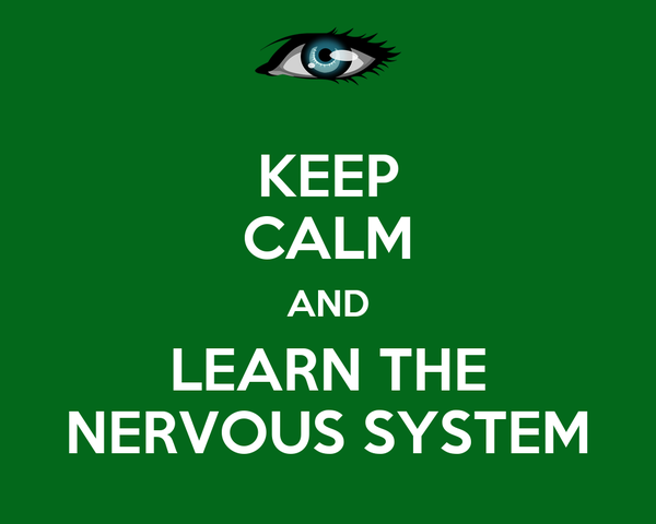 KEEP CALM AND LEARN THE NERVOUS SYSTEM