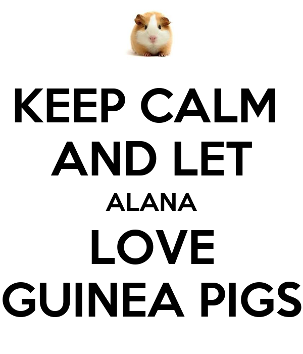 KEEP CALM  AND LET ALANA LOVE GUINEA PIGS