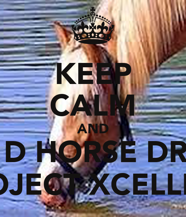 KEEP CALM AND LET D HORSE DRINK PROJECT XCELLECE