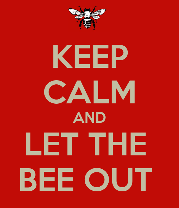 KEEP CALM AND LET THE  BEE OUT