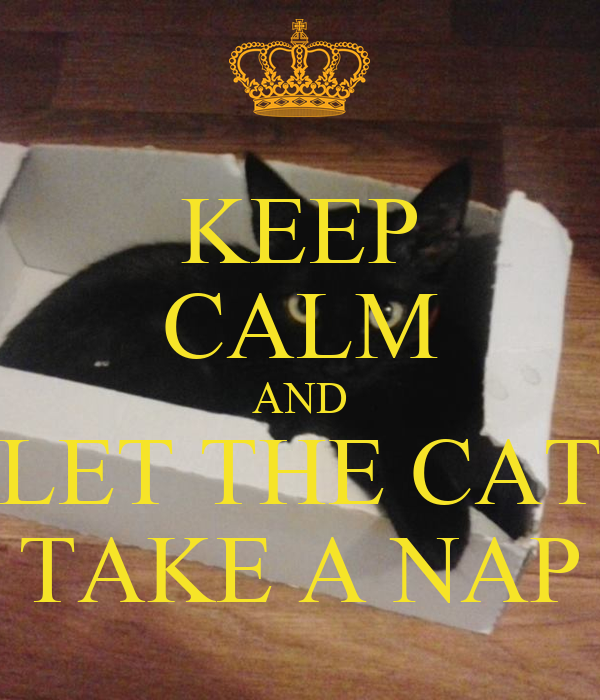 KEEP CALM AND LET THE CAT TAKE A NAP