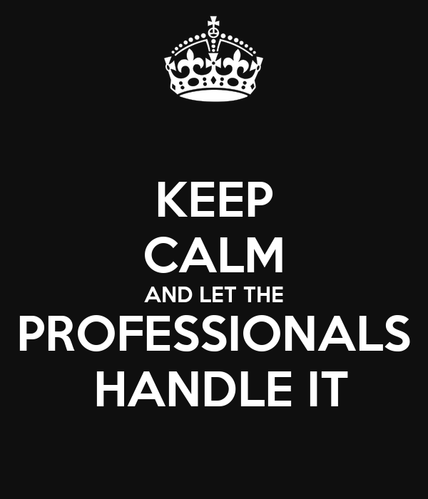 KEEP CALM AND LET THE PROFESSIONALS  HANDLE IT