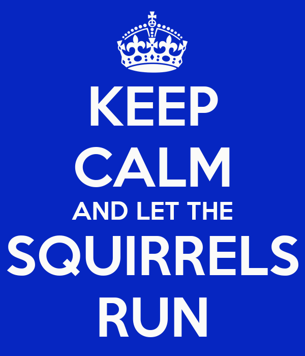 KEEP CALM AND LET THE SQUIRRELS RUN