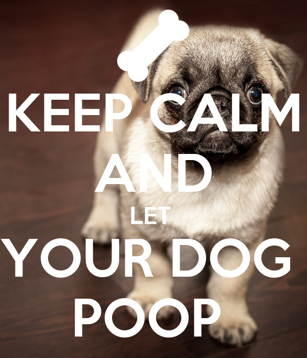 KEEP CALM AND LET  YOUR DOG  POOP