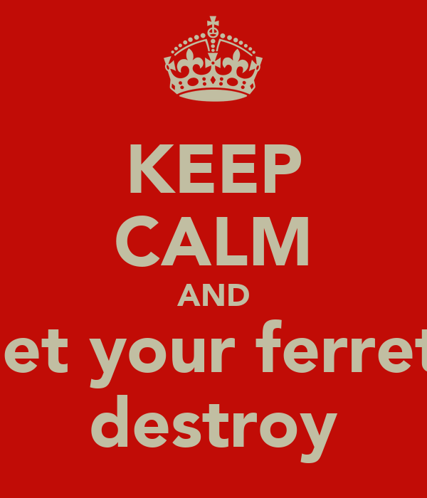 KEEP CALM AND let your ferret destroy