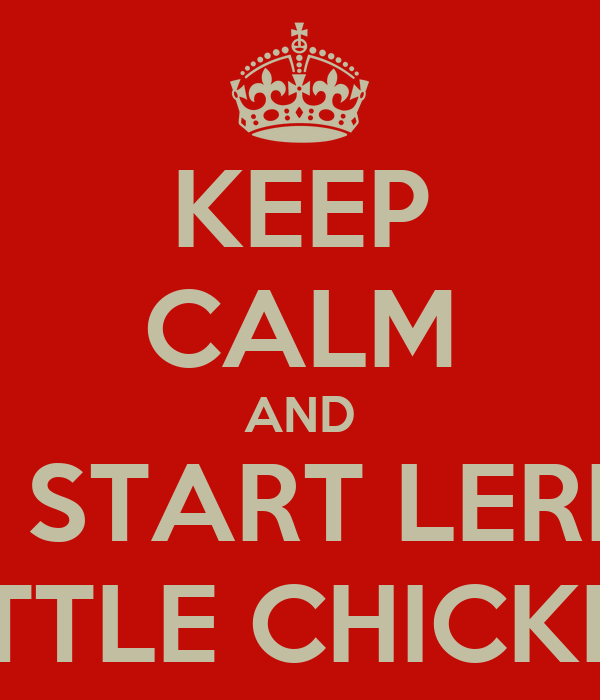 KEEP CALM AND LETS START LERNING LITTLE CHICKEN