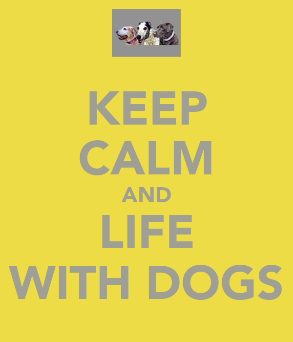 KEEP CALM AND LIFE WITH DOGS