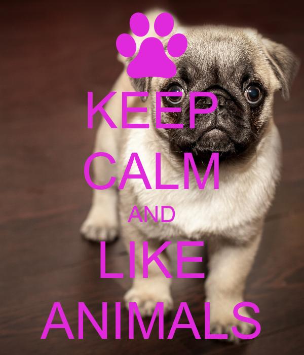 KEEP CALM AND LIKE ANIMALS