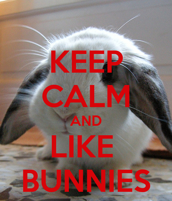KEEP CALM AND LIKE  BUNNIES