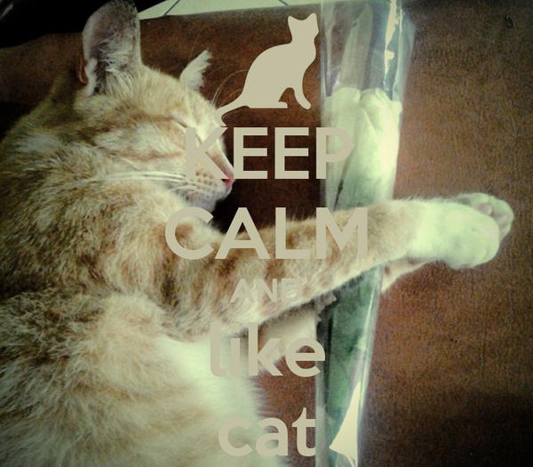 KEEP CALM AND like cat
