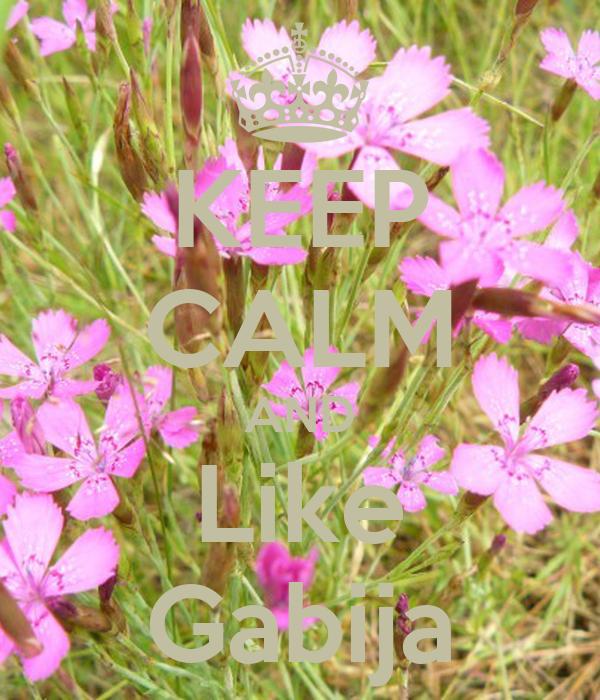 KEEP CALM AND Like Gabija