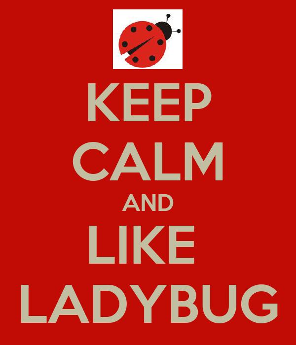 KEEP CALM AND LIKE  LADYBUG