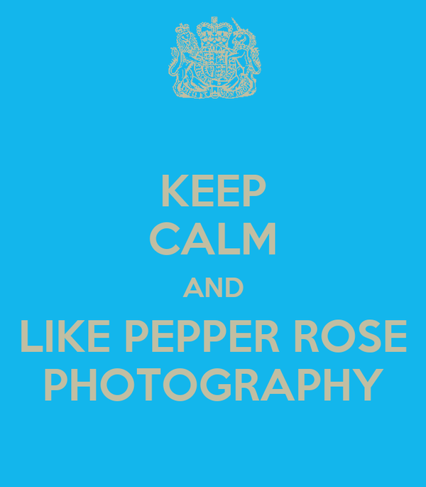 KEEP CALM AND LIKE PEPPER ROSE PHOTOGRAPHY