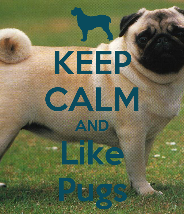 KEEP CALM AND Like Pugs