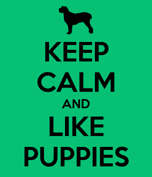KEEP CALM AND LIKE PUPPIES