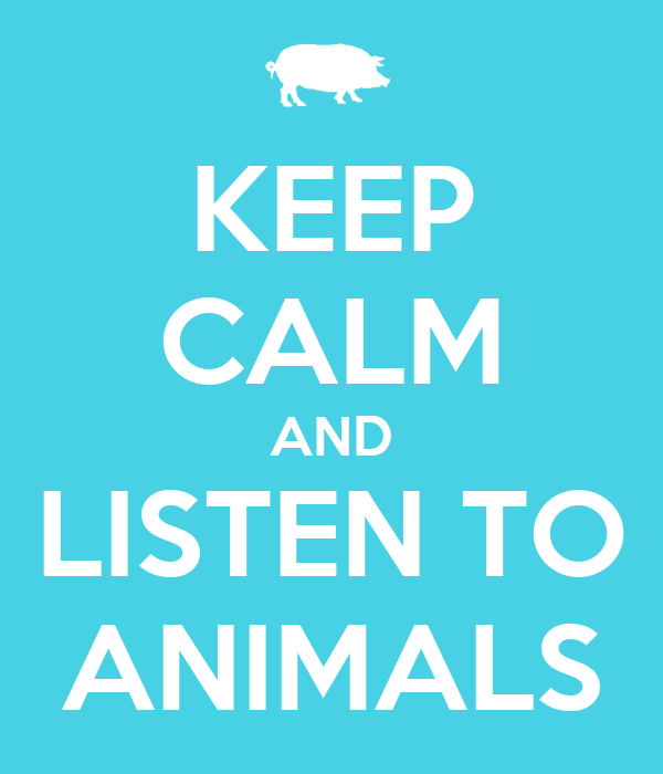 KEEP CALM AND LISTEN TO ANIMALS