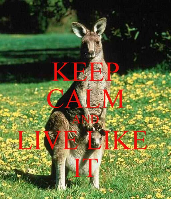 KEEP CALM AND LIVE LIKE  IT