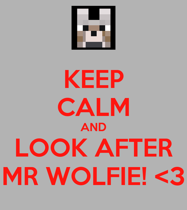 KEEP CALM AND LOOK AFTER MR WOLFIE! <3