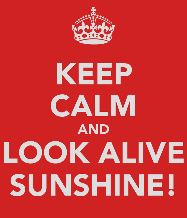 KEEP CALM AND LOOK ALIVE SUNSHINE!