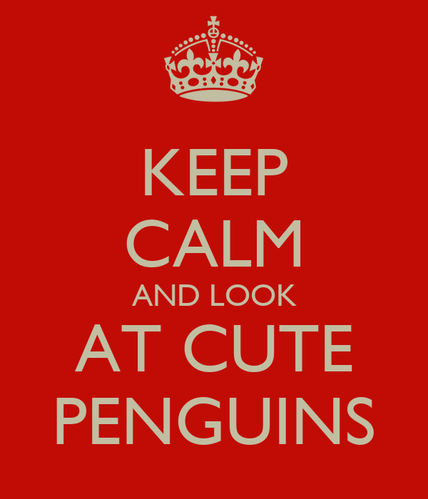 KEEP CALM AND LOOK AT CUTE PENGUINS