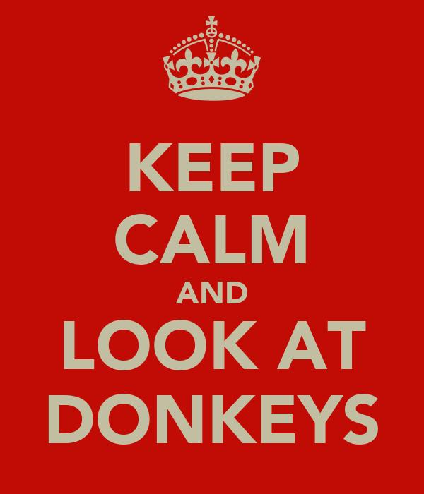 KEEP CALM AND LOOK AT DONKEYS