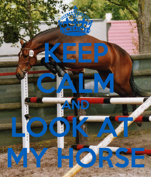 KEEP CALM AND LOOK AT  MY HORSE