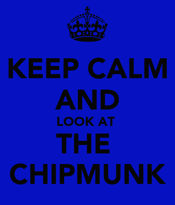 KEEP CALM AND LOOK AT  THE  CHIPMUNK