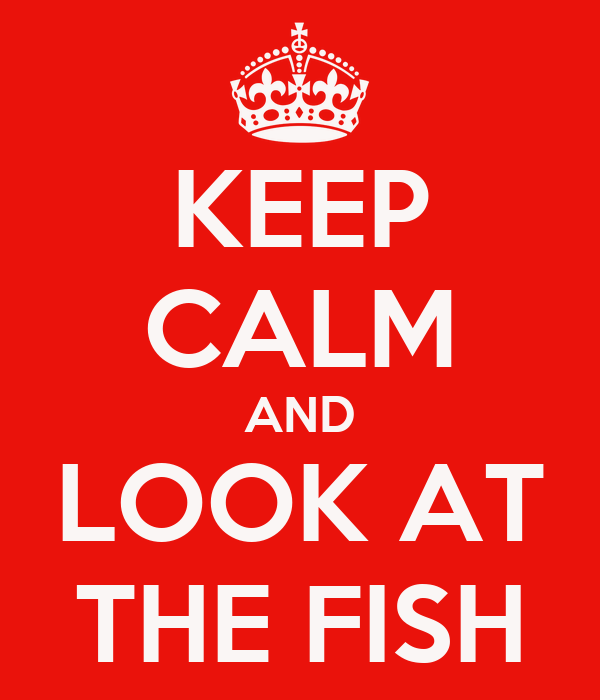 KEEP CALM AND LOOK AT THE FISH
