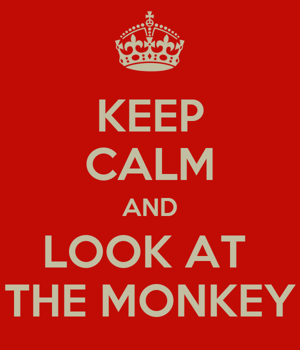 KEEP CALM AND LOOK AT  THE MONKEY