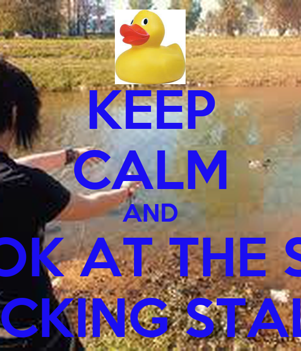 KEEP CALM AND LOOK AT THE SIZE OF THAT FUCKING STALLION DUCK