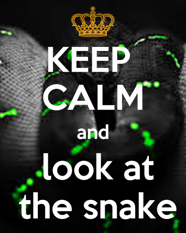 KEEP  CALM and  look at  the snake